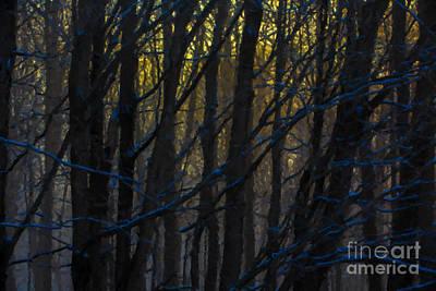 Winter Sunrise Art Print by Diane Diederich