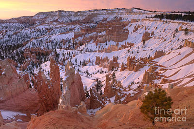 Photograph - Winter Sunrise In Bryce Canyon by Sandra Bronstein