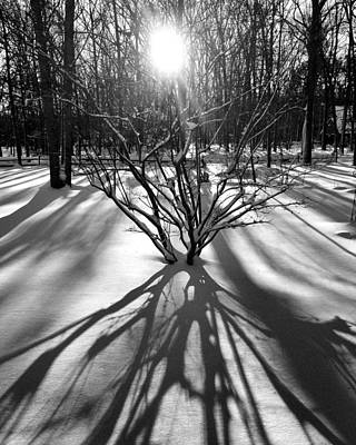 Winter Sunrise Shadows Art Print
