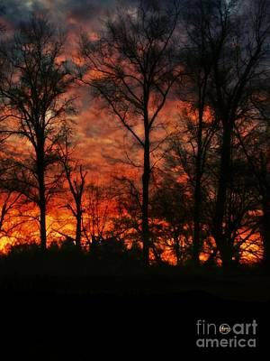 Photograph - Winter Sunset 2017 by Maria Urso