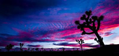 Photograph - Winter Sunset by Casey Kiernan