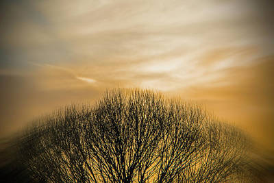 Art Print featuring the photograph Winter Sunset by Charles Ables
