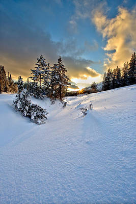 Photograph - Winter Sunset by David Andersen