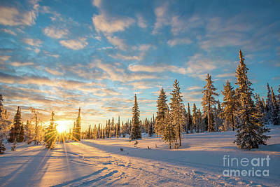 Art Print featuring the photograph Winter Sunset by Delphimages Photo Creations