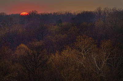 Photograph - Winter Sunset by Don Wolf