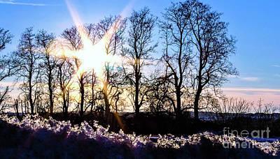 Wall Art - Photograph - Winter Sunset by Elaine J Hoffman