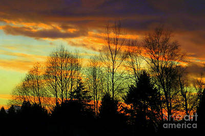Photograph - Winter Sunset by Frank Townsley