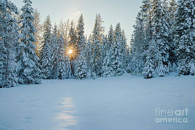 Photograph - Winter Sunset by Idaho Scenic Images Linda Lantzy