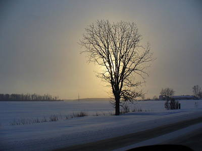 Photograph - Winter Sunset In Lambton County by Peggy King