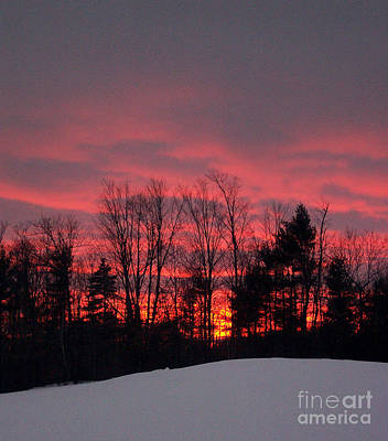 Photograph - Winter Sunset In Maine by Linda Drown