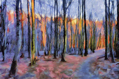 Winter Sunset In The Beech Wood Art Print