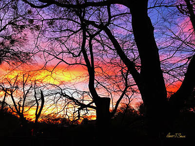 Photograph - Winter Sunset Jan 31 by Robert J Sadler