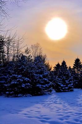 Photograph - Winter Sunset by Michelle McPhillips