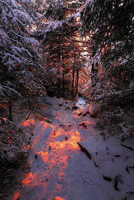 Photograph - Winter Sunset On The Trail by Chris Whiton