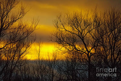 Photograph - Winter Sunset by Paul Farnfield