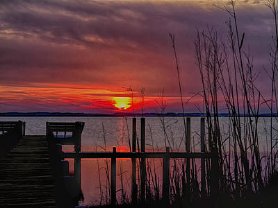 Photograph - Winter Sunset by Sandra Anderson