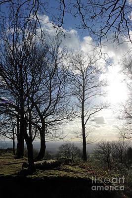 Photograph - Winter Sunshine In Surrey Hills by Julia Gavin