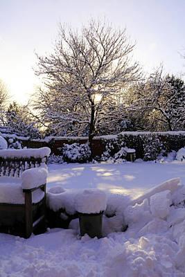 Photograph - Winter Sunshine by Tony Murtagh