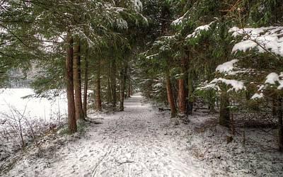 Digital Art - Winter by Super Lovely