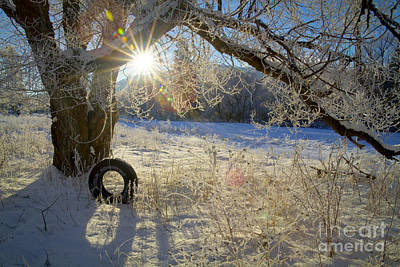 Photograph - Winter Swing by Idaho Scenic Images Linda Lantzy