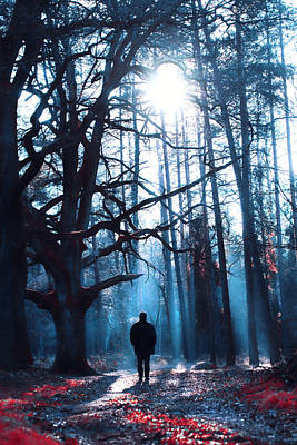 Walking Away Photograph - Winter Tale by Art of Invi