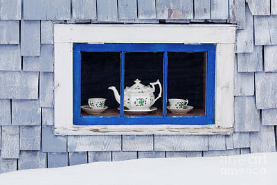Photograph - Winter Tea by Alan L Graham