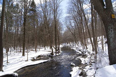 Photograph - Winter Thaw - A Woodland Stream by Margie Avellino