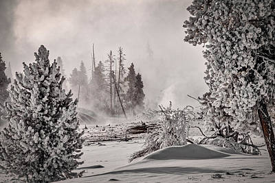 Photograph - Winter Thermal Steam - Yellowstone by Stuart Litoff