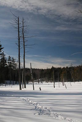 Winter Photograph - Winter Time by Jeff Porter