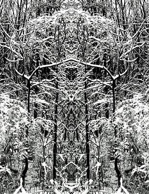 Photograph - Winter Totem Trees by Marianne Dow