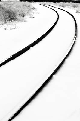 Photograph - Winter Tracks by Michelle Calkins