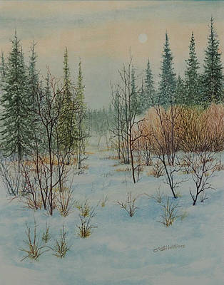 Winter Trail Alberta Art Print