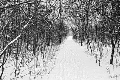 Winter Trail Original by Phill Doherty