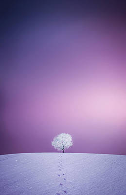 Winter Tree Original by Bess Hamiti