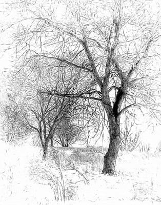 Winter Trees Digital Art - Winter Tree In Field Of Snow Sketch by Randy Steele