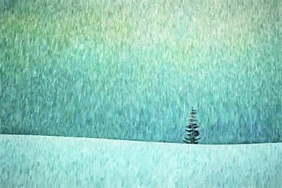 Photograph - Winter Tree by Nikolyn McDonald