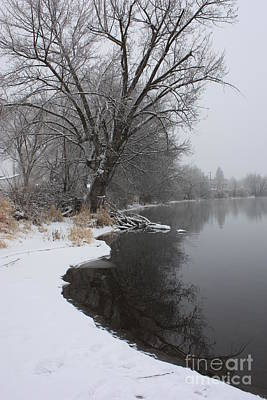 Winter Tree Reflecting On Snowy Yakima River Print by Carol Groenen