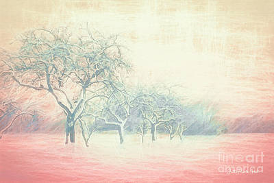 Digital Art - Winter Trees Abstract by Jutta Maria Pusl