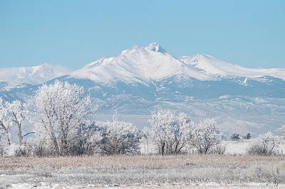 Photograph - Winter Trees And Longs Peak by Aaron Spong