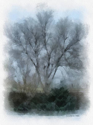 Digital Art - Winter Trees by Donald S Hall