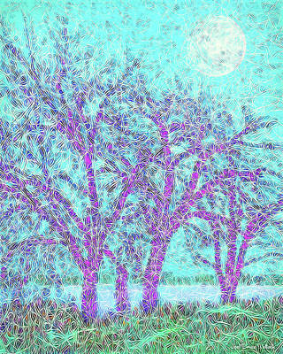 Art Print featuring the digital art Winter Trees In Moonlight Blue - Boulder County Colorado by Joel Bruce Wallach