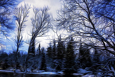 Curvilinear Painting - Winter Trees In Sweden by Barry W King