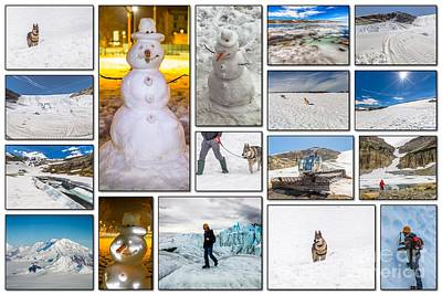 Winter Vacation Collage Art Print