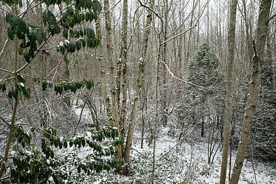 Photograph - Winter View From Our Apartment by Tom Cochran