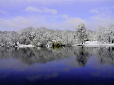 Winter View Art Print by Karol Livote