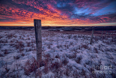 Saskatchewan Photograph - Winter Views by Ian McGregor