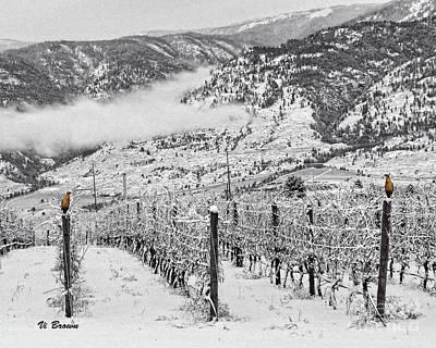 Winter Vineyard Plus 2 Art Print