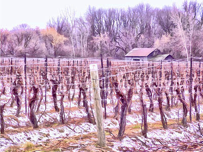 Digital Art - Winter Vineyards - Niagara Region by Leslie Montgomery