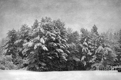 Photograph - Winter Vintage by Karin Pinkham