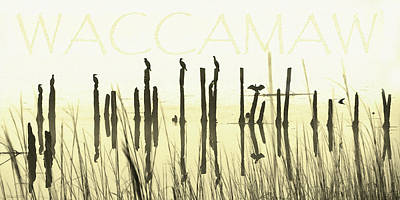 Digital Art - Winter Waccamaw Mist by Deborah Smith